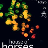 HOUSE OF HORSES HORSE IS NOT